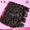 100% No Hair Dye New Arrival Peruvian Virgin Hair Human Hair Water Weave (QB-PVRH-ST)
