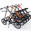 Folding Bicycle with Bag (NY-FB001) for Adult