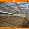 Modern Design High Light Transmittance Glass Multi-Span Greenhouse