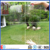 Ultra Clear Solar Low Iron Pattern /Float Glass. (EGSO009)