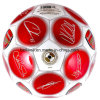 Machine Stitched Shiny Size#5 PVC Football/Soccer Ball