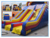 Inflatable Water Slide with Customized Pool