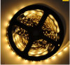 W/R/G/B Color Watertproor SMD2835 LED Strip Lights for Hotel/Market/Room/Building Decoration