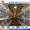 China Design and Chinese Standard Steel Structure Material Prefabricated Poultry