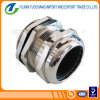 Flexible Conduit Adapter Brass Cable Gland