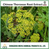 100% Natural Chinese Thorowax Root Extract with Saikosaponins 5%