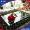 Clear Square Acrylic Serving Tray