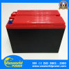 Electric Rickshaw Battery 12V30ah Electric Vehicle Battery Made in China