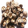 Manufacturer of Mushroom Extract/FDA; ISO22000; Kosher; SGS; Halal