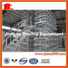 H Style Poultry Equipment for Chicken Farm Feed