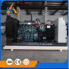 China Factory Genset Indonesia with Perkins
