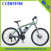 New Arrival 250W Electric Mountain Bike with Lithium Battery
