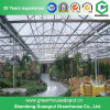 Multi-Span Steel Frame/ Aluminum Profile PC Sheet Greenhouse for Flower