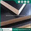 Construction Material Made in China, Black Film Faced Plywood
