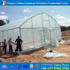 Shading Net Covers Film Greenhouse for Mushroom
