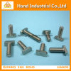 "Stainless Steel Factory Price Ss 304 5/16"" T Head Bolt"