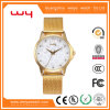 Wholesale OEM Antique Customize Stainless Steel Luxury Gift Watches (WY-027)