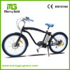 Merry Gold 36V 250W Man Beach Cruiser Electric Bike Bicycle