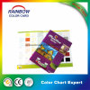 High Quality Professional Brochure Printing Color Chart for Advertising