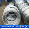 High Quality Galvanized Iron Wire on Sale