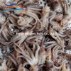 Making Frozen Sea Foods Squid Head