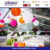 2016 Transparent Party Tent for Sale
