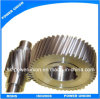 Helical Cog-Wheel/ Transmission Helical Gears for Robots