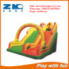 Inflatable Bouncer for Children Play Fun
