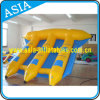 Inflatable Fly Fish Water Games, Inflatable Surfing Flying Fish