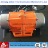 Mini Type Electric Vibration Motor for Sale