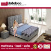 Model Double Leather Bed for Bedroom Home Furniture (G7009)