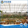Glass Greenhouse Greenhouse for Restaurant