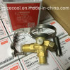 New Packing Made in Denmark R134 Danfoss Thermostatic Expansion Valve Ten2 068z3348 for Air Conditioning