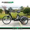 Three Wheels Lithium Tricycle for Elder