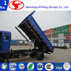 Tipper/Dumper/Dump Truck for Loading 8 Tons//Light Cargo Truck/Lifting Equipment/Lcv/Large Cargo Box Truck/Isuzu Cargo Box Truck/Ice Box Truck/Hydraulic Site