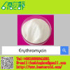 Raw Materials Powders Erythromycin (CAS: 114-07-8)