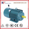 Electric (Electrical) AC Induction Brake Motor with Cast Iron