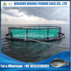 Floating HDPE Fish Cage Hot Sale in Fish Farming Business