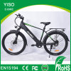 21 Speed 48V 10ah/13ah Lithium Battery Electric Bike Tandem