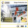 Fresh Orange/Watermelon/Passion Fruit Juice Production Line