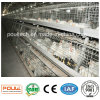 Best Price High Quality Broiler Chicken Cage System