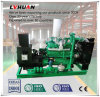 6 Cylinder 60 Kw Biogas Generator Set Power Generating