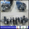 Crankshaft for VW Golf/ 2.0L/ 1.8L/ Passat/ Satana/ Jetta