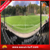 Natural Football Grass Turf for Soccer Field