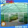Black Color Greenhouse Agricultural Shade Netting for Vegetable Nursery / Carport / Swimming Poo