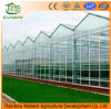 Modern Glass Agricultural Greenhouse with Hot-Galvanized Steel Stable Structure Light Hydroponics Growing System/ for Sightseeing/ Strawberry/ Tomato/ Cucumber