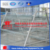 Chicken Farm Battery Chicken Layer Cage for Pakistan Farm