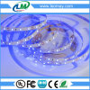 UV LED Strips with 2835 SMD