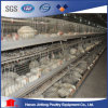 Automatic /Semi Automatic Poultry Equipment for Broiler Chickenon Sell