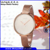 Waterproof Watch Alloy Watch for Women Luxury Watch (Wy-109B)